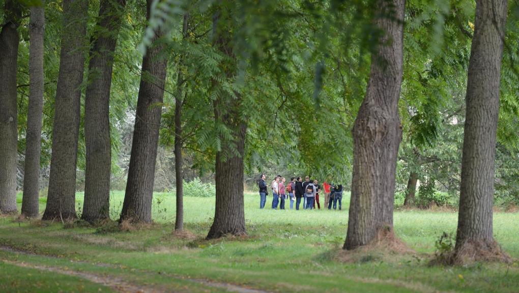 Visite guidée dans l'Arboretum de Versailles-Chèvreloup © MNHN - S. Gerbault