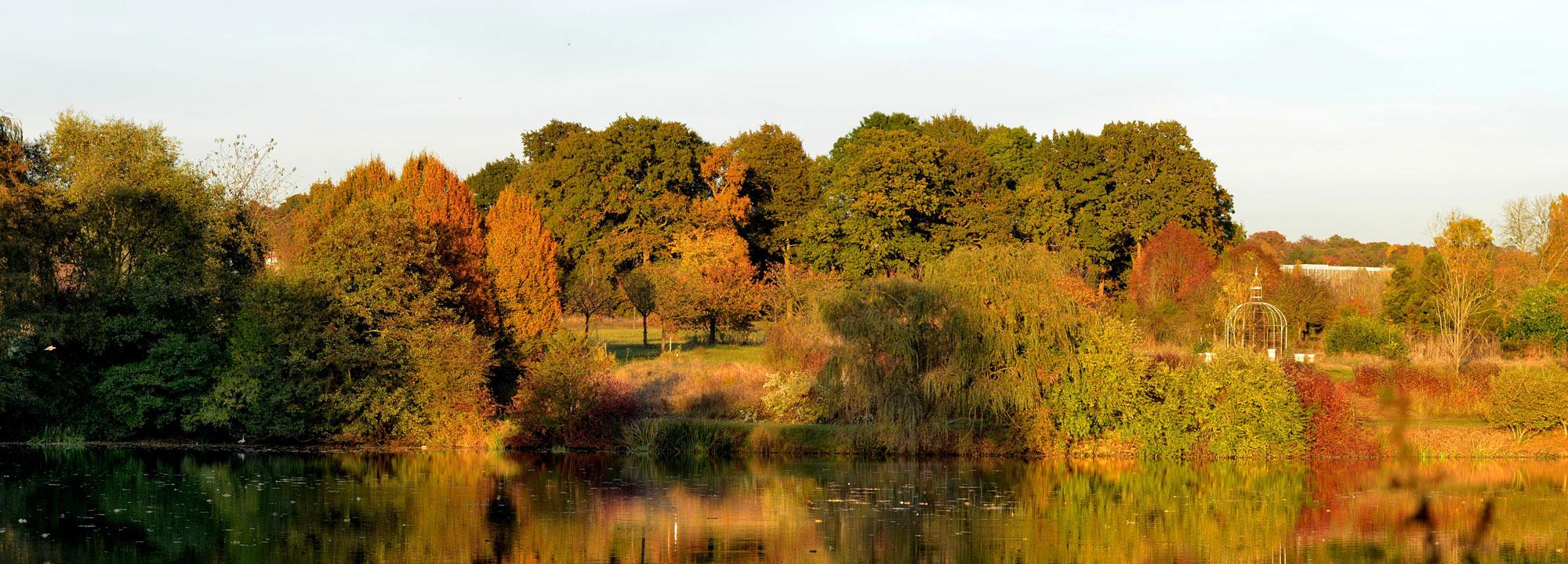 Vue de l'Étang aux Hérons en automne © MNHN - S. Gerbault